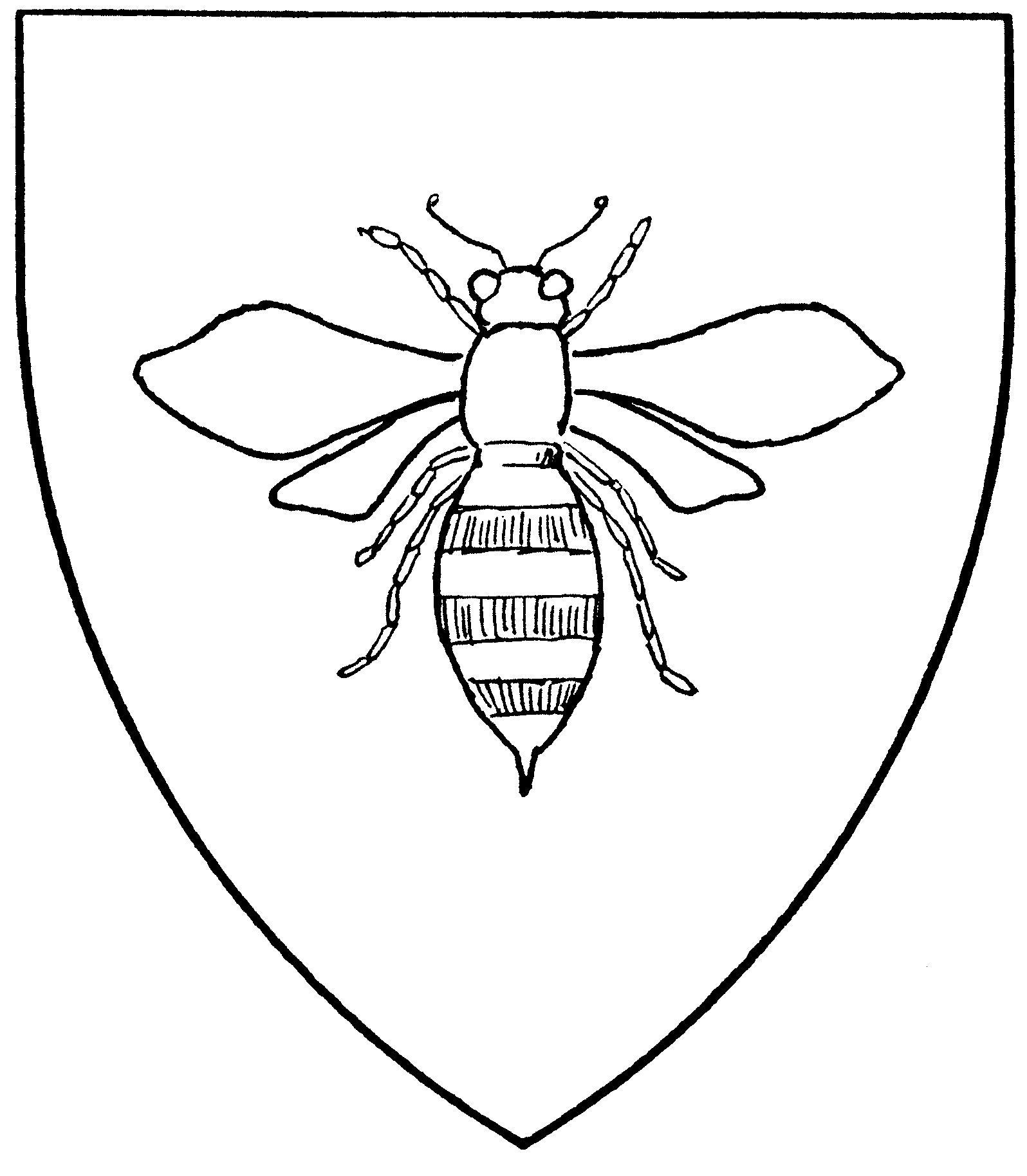 Fly Head Bee Body Bee