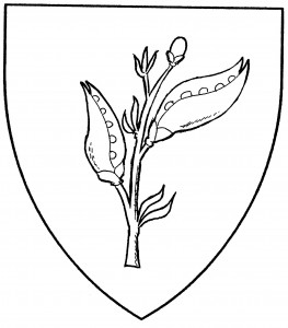 Sprig of broom (Period)