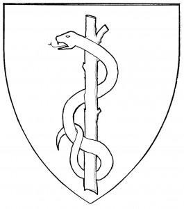 Rod of Aesculapius (Accepted)
