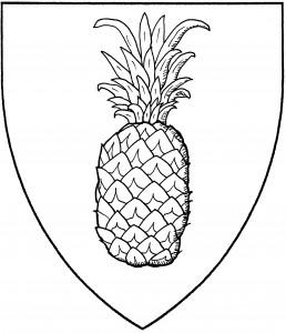 New World pineapple (SFPP)