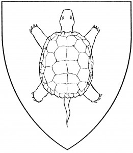 Tortoise (Period)