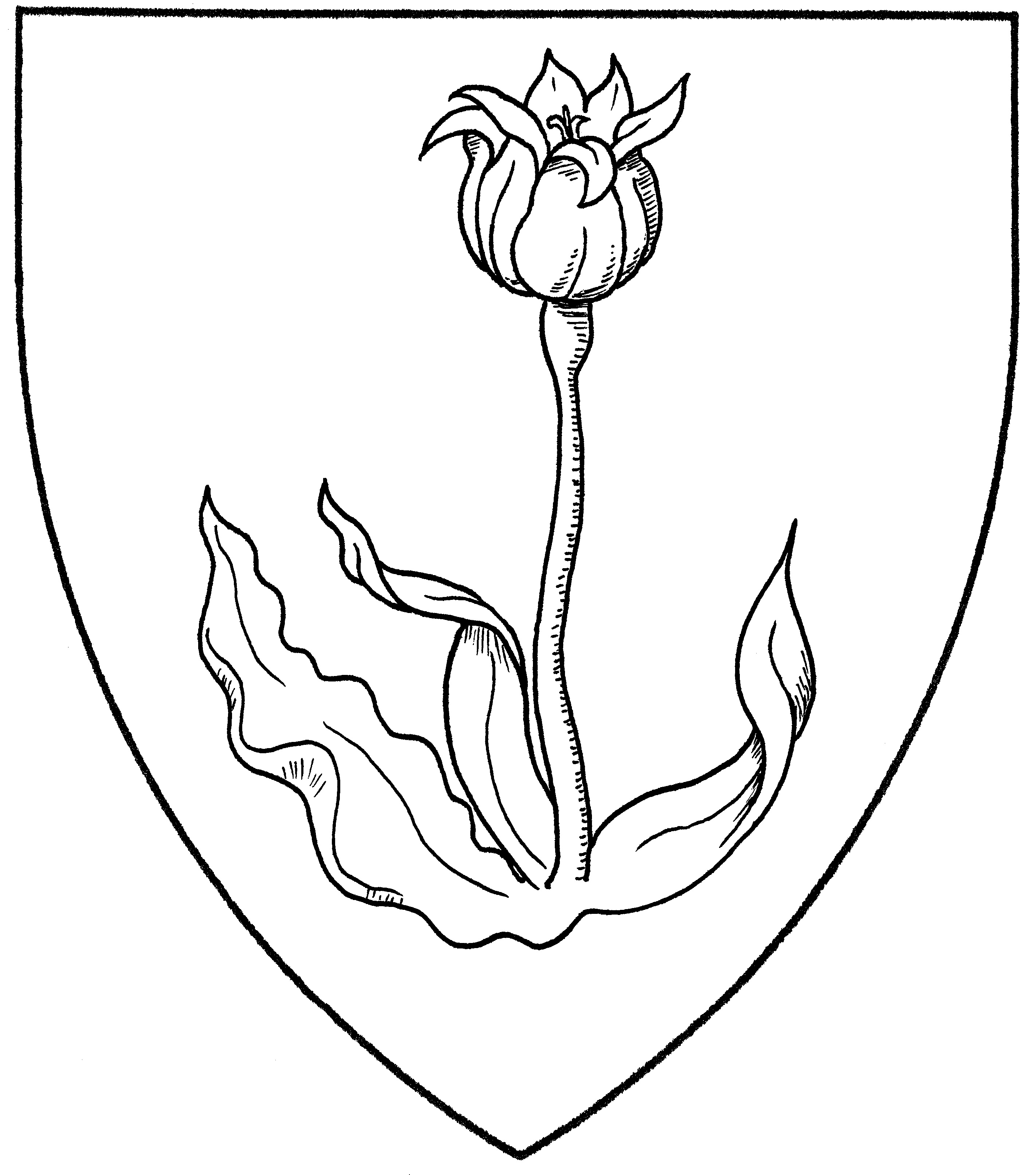 search results for tulip mistholme
