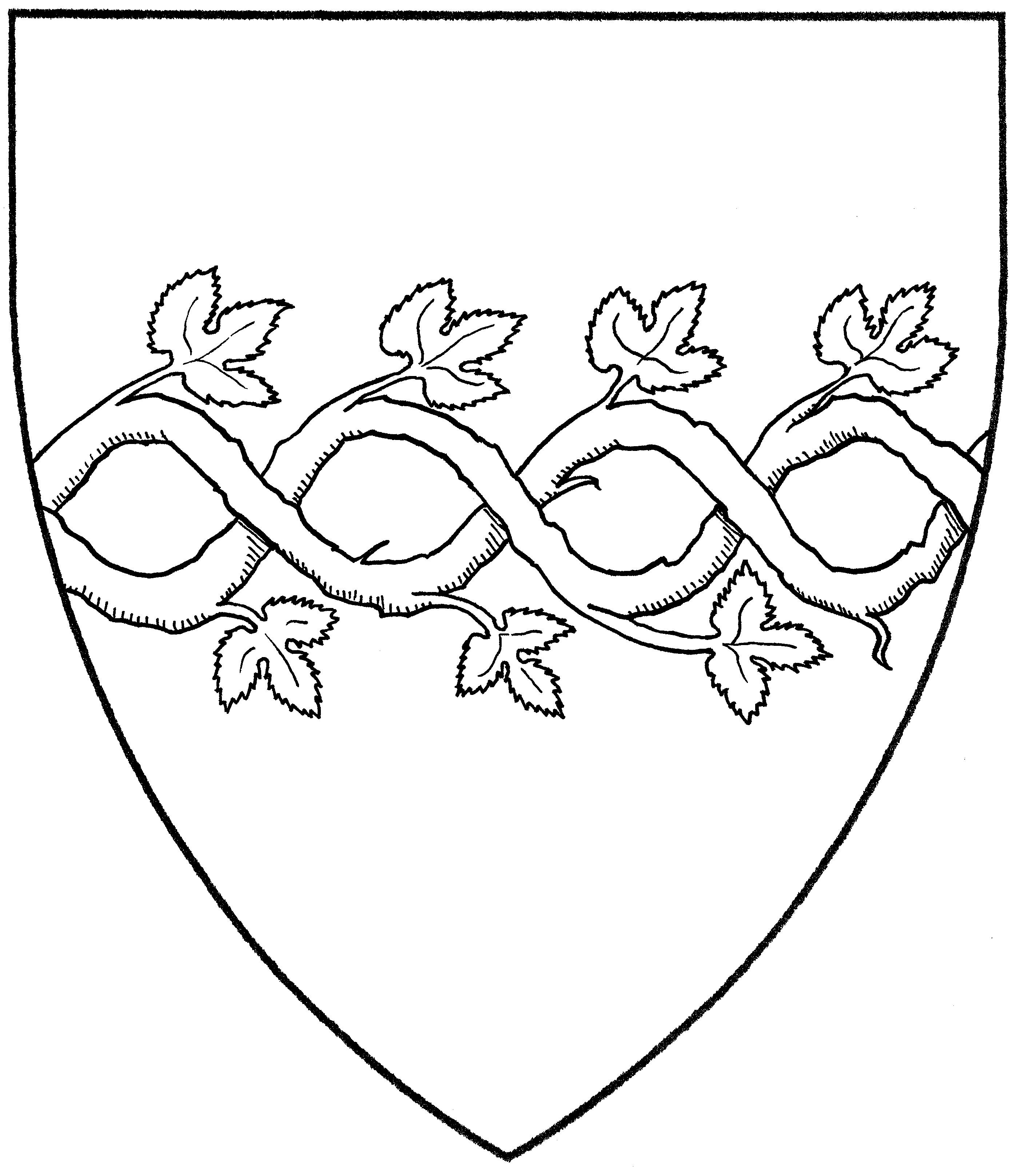 Vine | Mistholme for Drawing Grape Vines  285eri